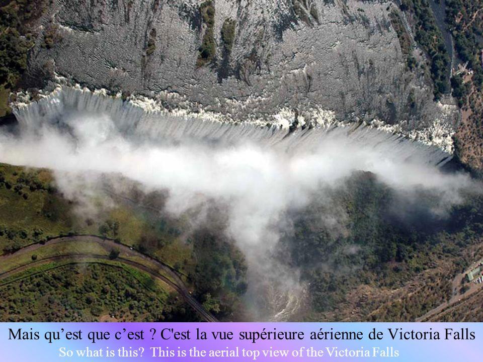 Mais qu'est que c'est C est la vue supérieure aérienne de Victoria Falls
