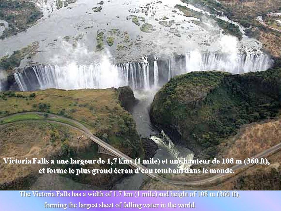 Victoria Falls a une largeur de 1,7 kms (1 mile) et une hauteur de 108 m (360 ft), et forme le plus grand écran d eau tombant dans le monde.