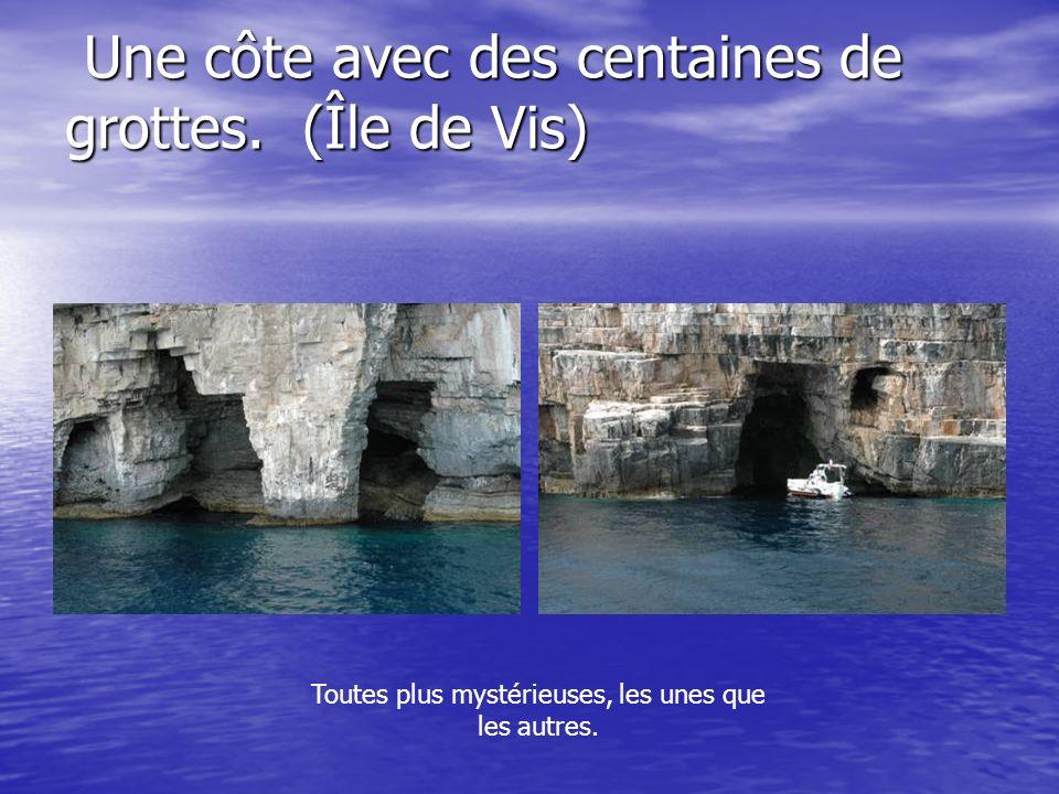 Une côte avec des centaines de grottes. (Île de Vis)