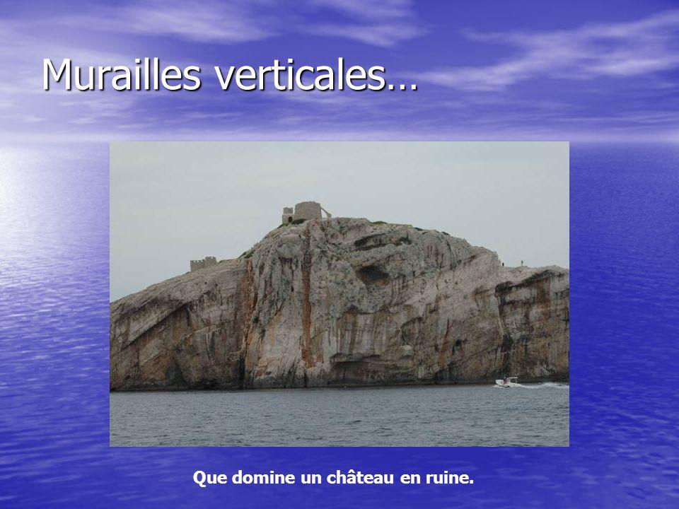 Murailles verticales…