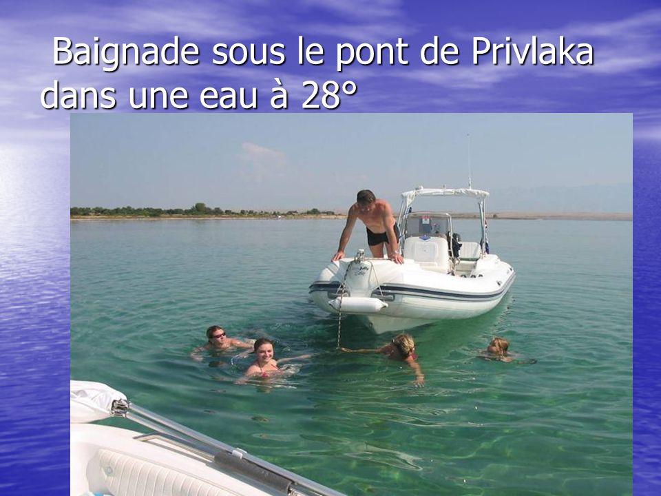 Baignade sous le pont de Privlaka dans une eau à 28°