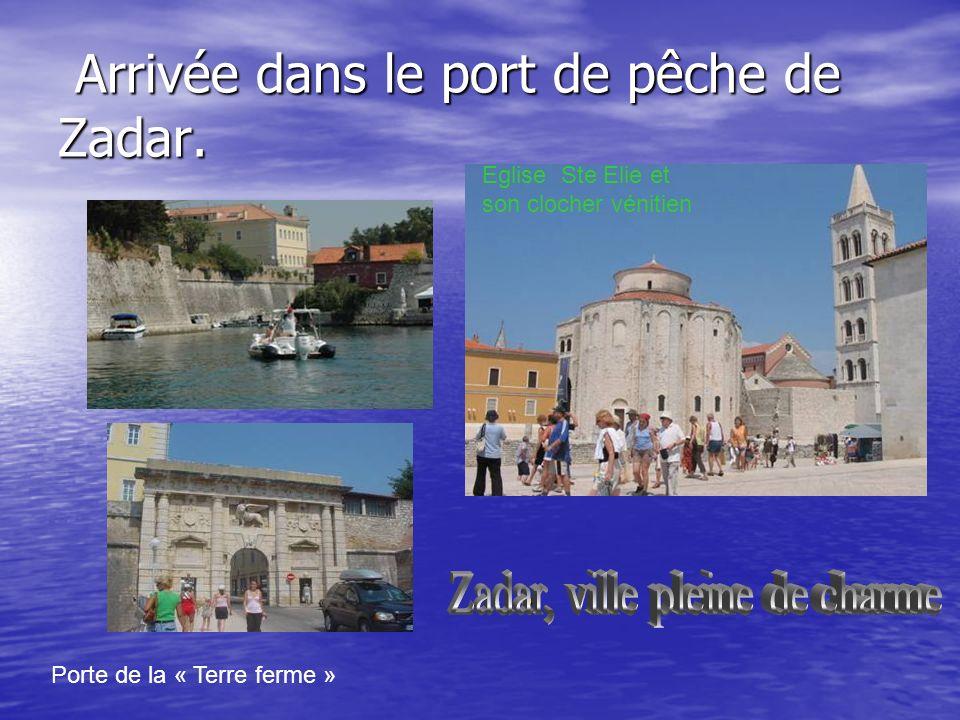 Arrivée dans le port de pêche de Zadar.