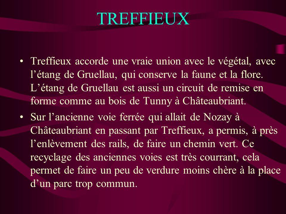 TREFFIEUX