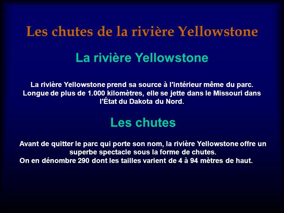 Les chutes de la rivière Yellowstone