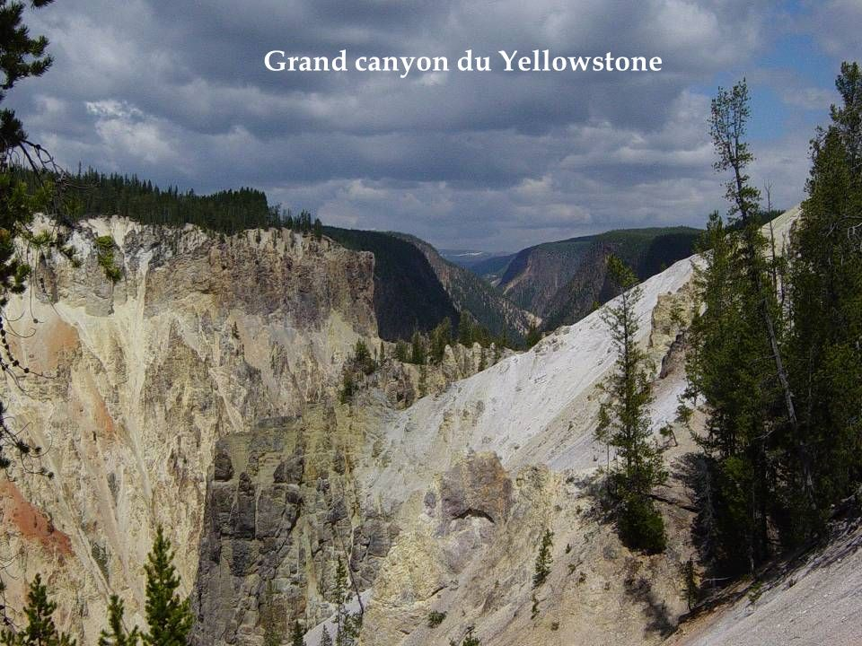 Grand canyon du Yellowstone