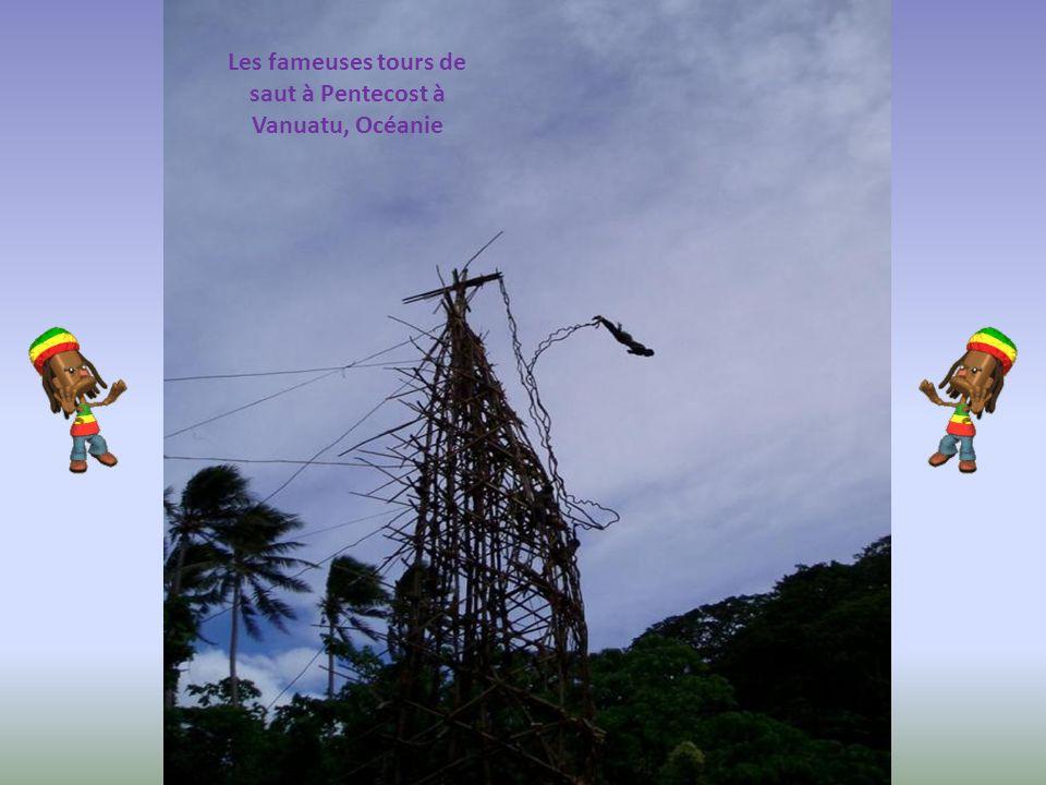 Les fameuses tours de saut à Pentecost à Vanuatu, Océanie