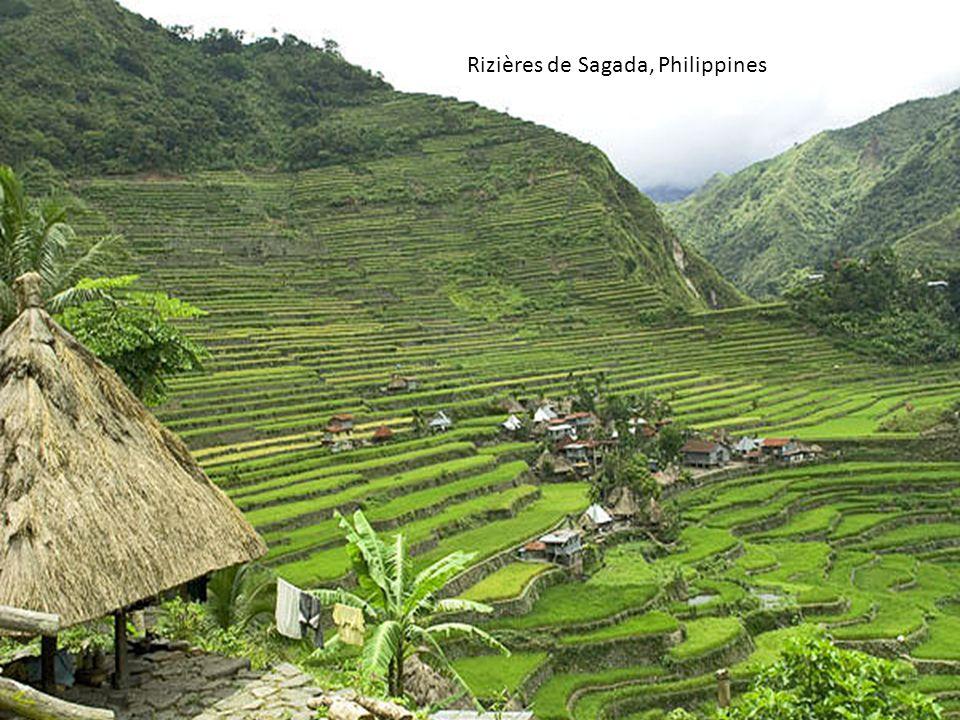 Rizières de Sagada, Philippines