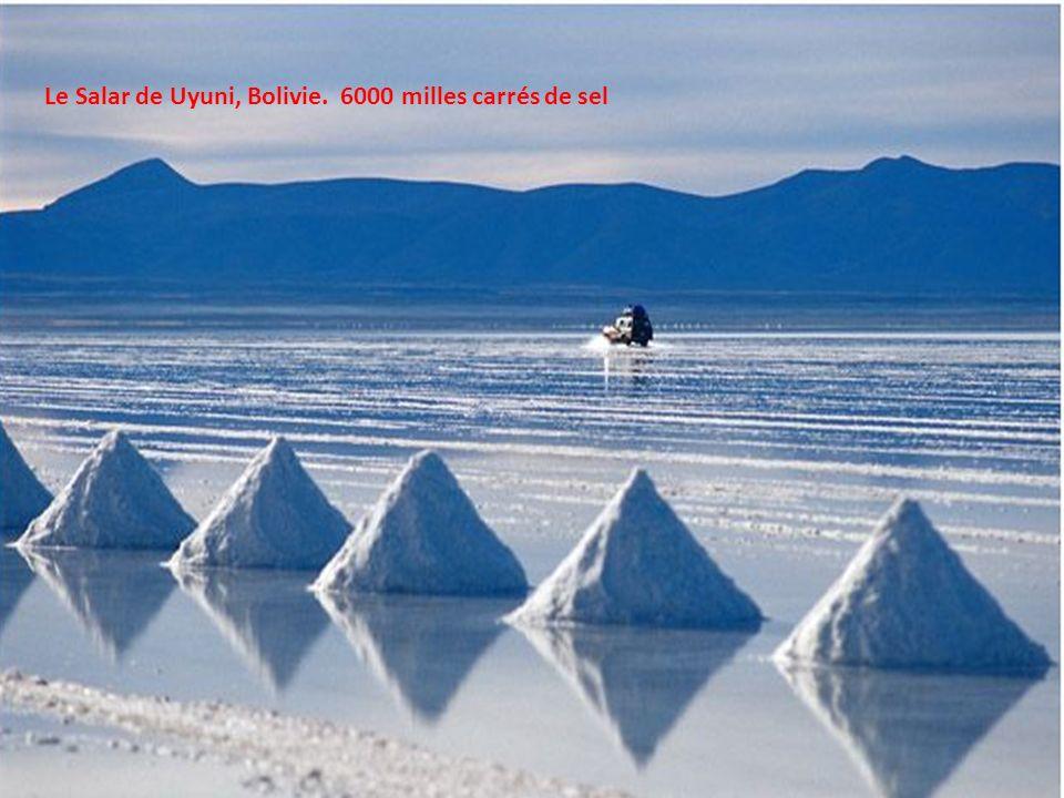 Le Salar de Uyuni, Bolivie. 6000 milles carrés de sel