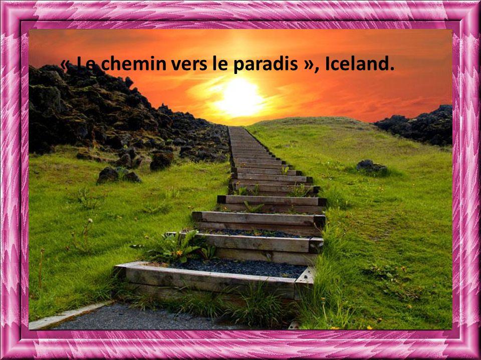 « Le chemin vers le paradis », Iceland.