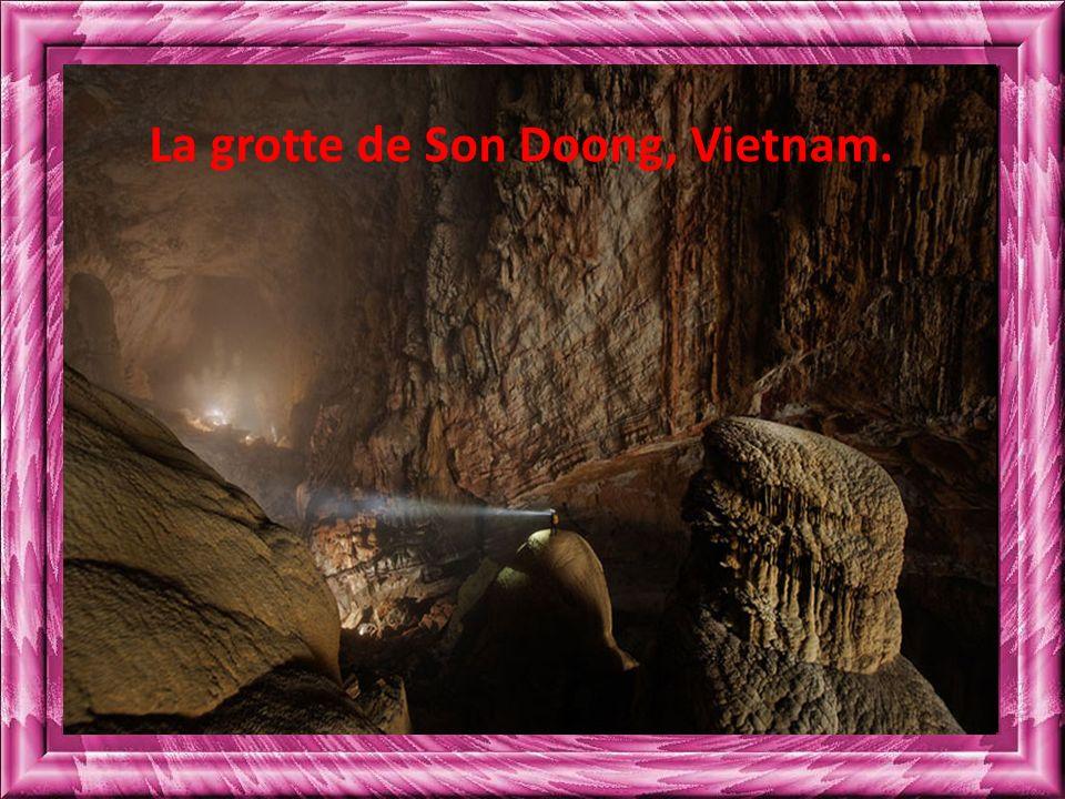 La grotte de Son Doong, Vietnam.