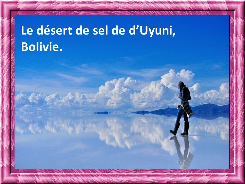 Le désert de sel de d'Uyuni, Bolivie.