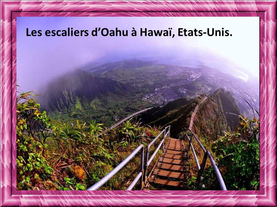 Les escaliers d'Oahu à Hawaï, Etats-Unis.