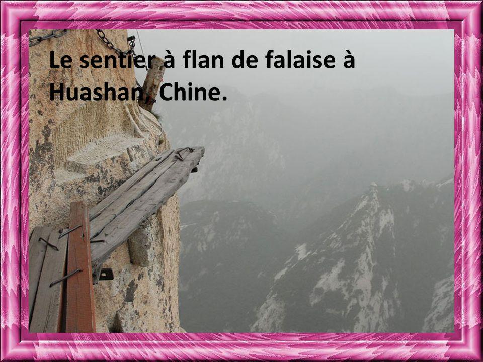 Le sentier à flan de falaise à Huashan, Chine.