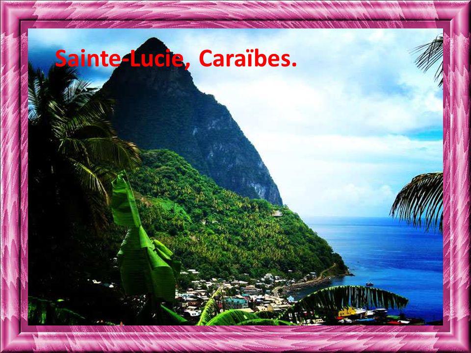Sainte-Lucie, Caraïbes.