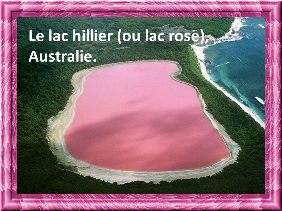 Le lac hillier (ou lac rose), Australie.