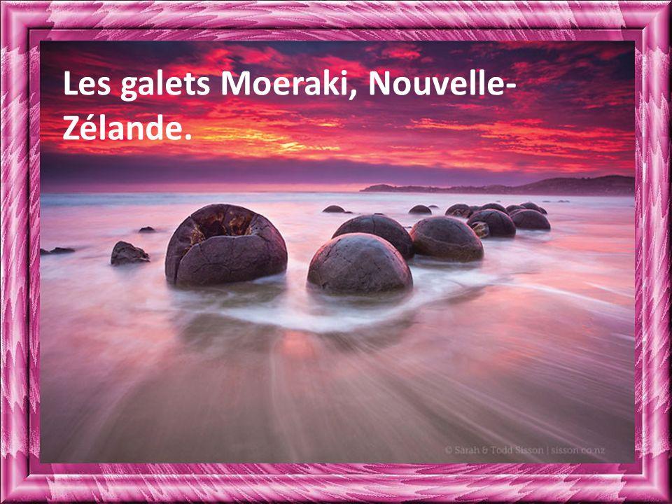 Les galets Moeraki, Nouvelle-Zélande.