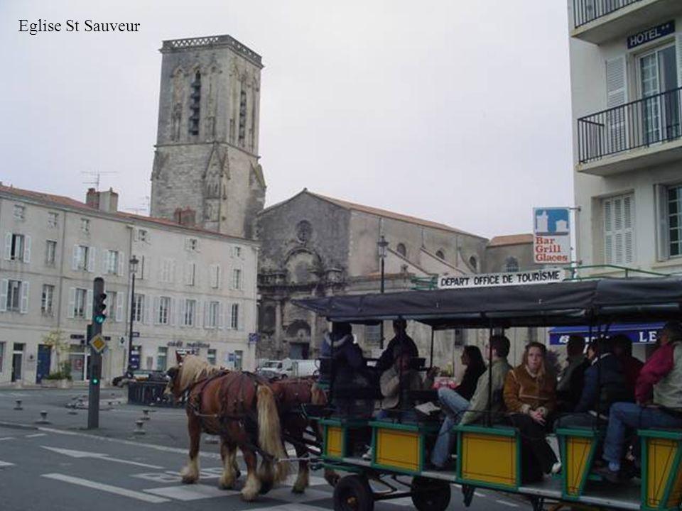 Eglise St Sauveur 20