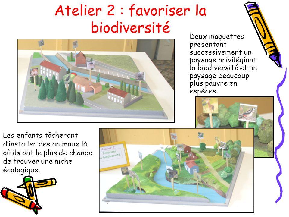 Atelier 2 : favoriser la biodiversité