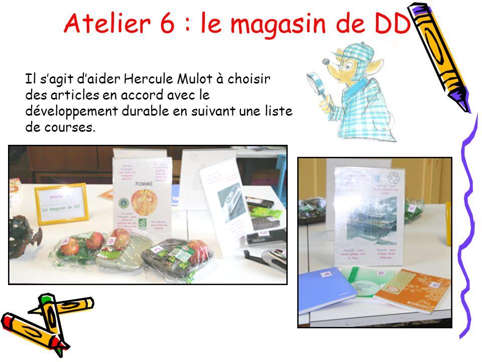 Atelier 6 : le magasin de DD