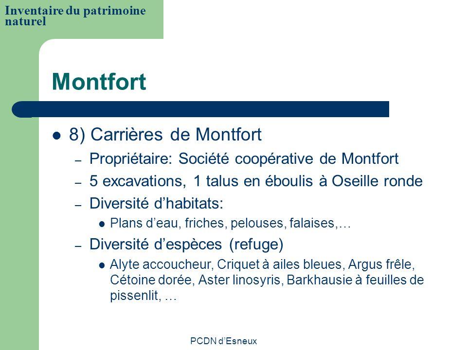 Montfort 8) Carrières de Montfort