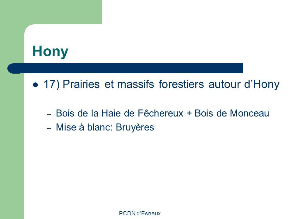 Hony 17) Prairies et massifs forestiers autour d'Hony