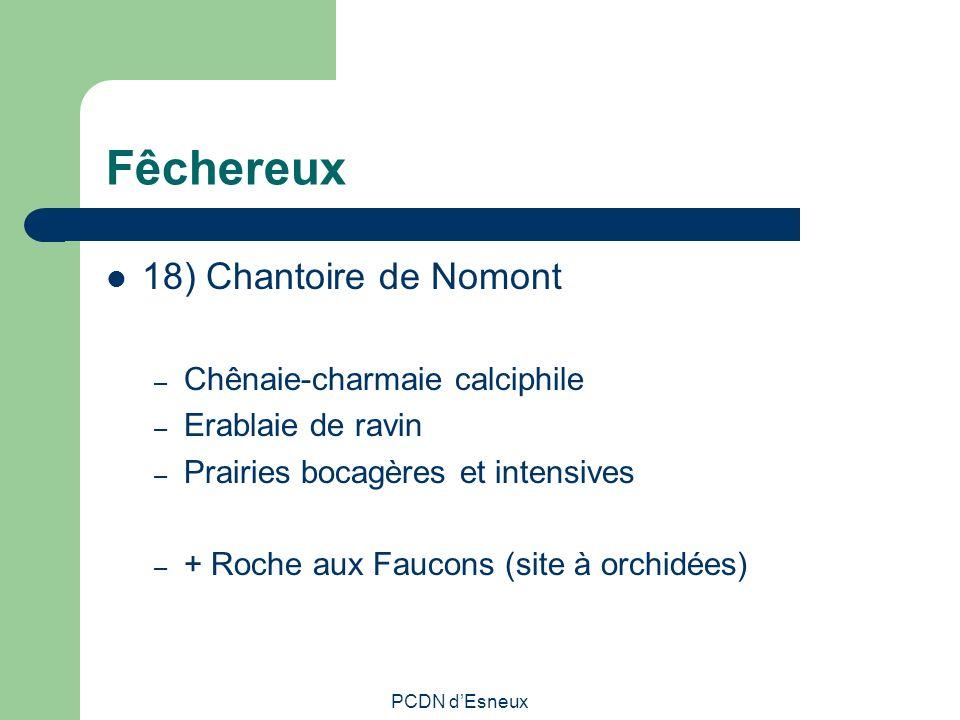 Fêchereux 18) Chantoire de Nomont Chênaie-charmaie calciphile