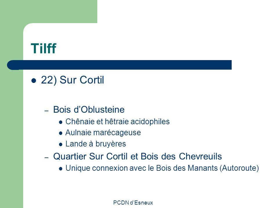 Tilff 22) Sur Cortil Bois d'Oblusteine
