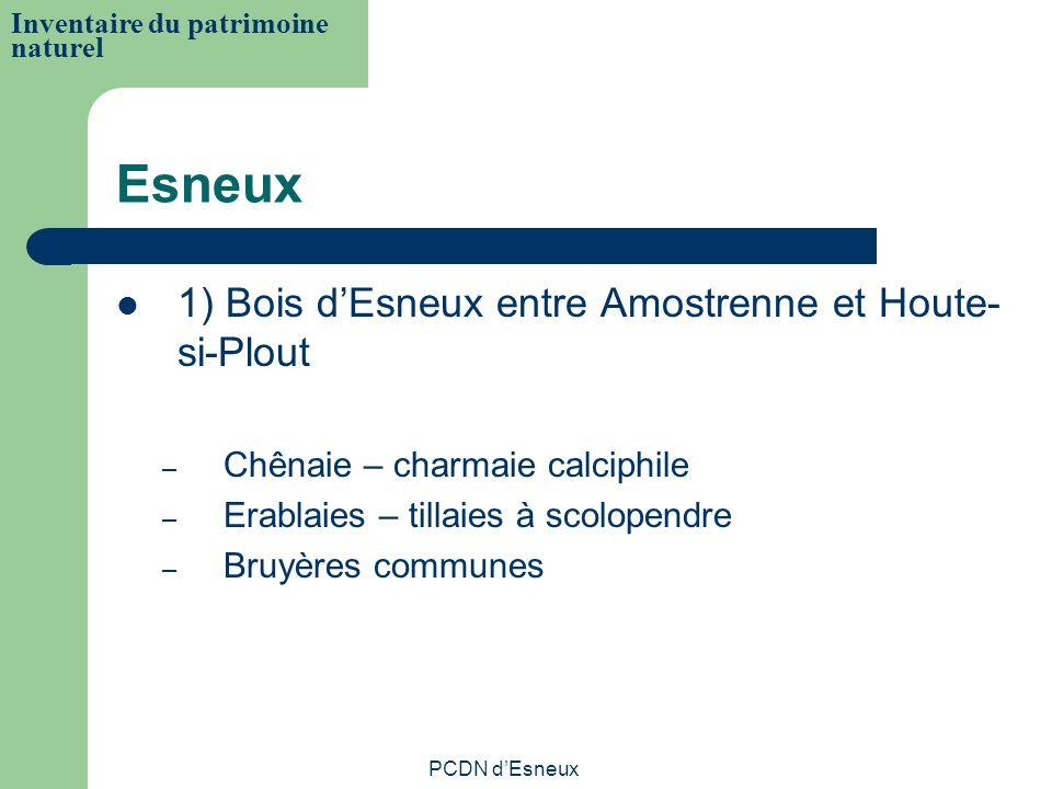 Esneux 1) Bois d'Esneux entre Amostrenne et Houte-si-Plout