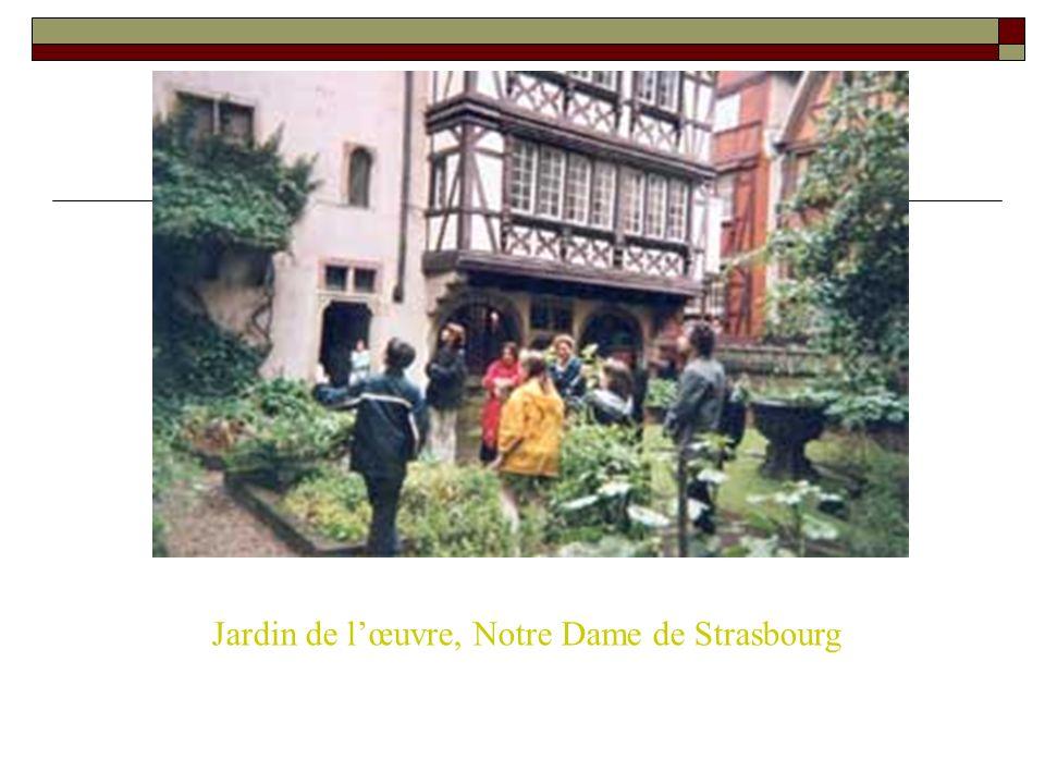 Jardin de l'œuvre, Notre Dame de Strasbourg