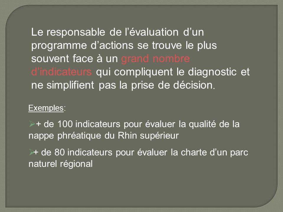 Le responsable de l'évaluation d'un programme d'actions se trouve le plus souvent face à un grand nombre d'indicateurs qui compliquent le diagnostic et ne simplifient pas la prise de décision.
