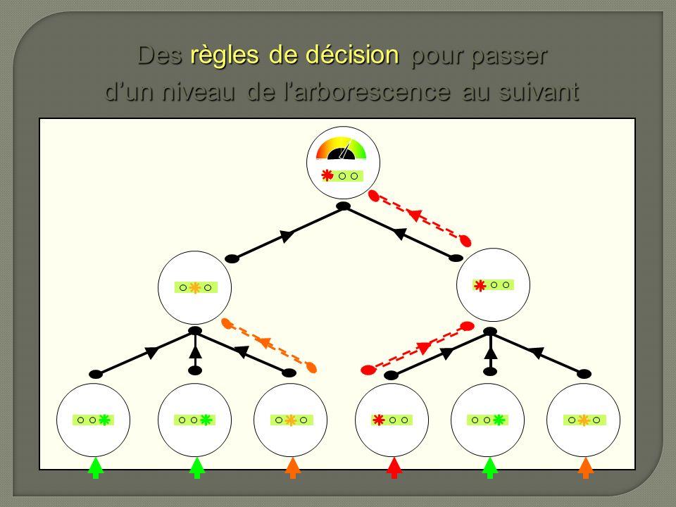 Des règles de décision pour passer