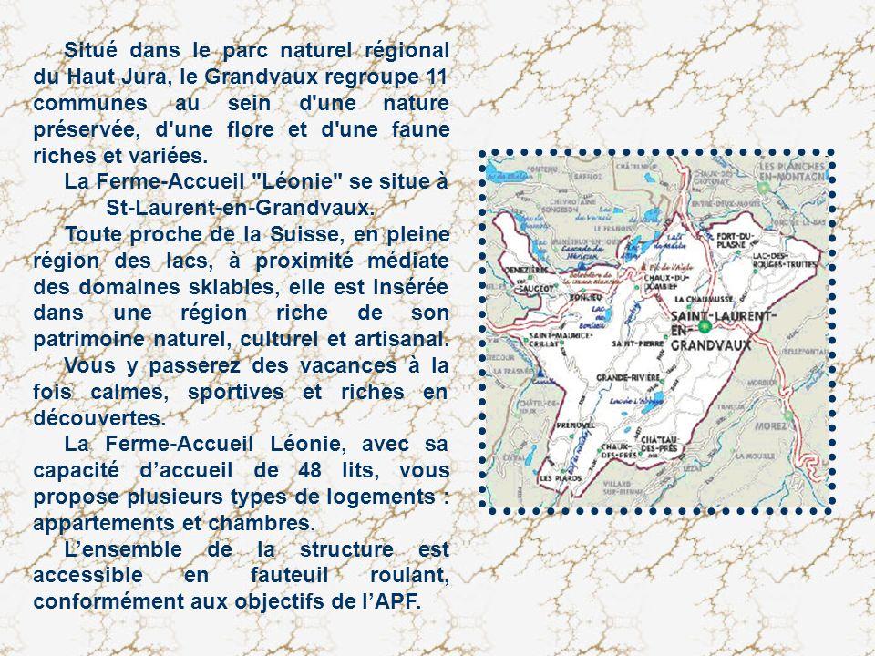 Situé dans le parc naturel régional du Haut Jura, le Grandvaux regroupe 11 communes au sein d une nature préservée, d une flore et d une faune riches et variées.