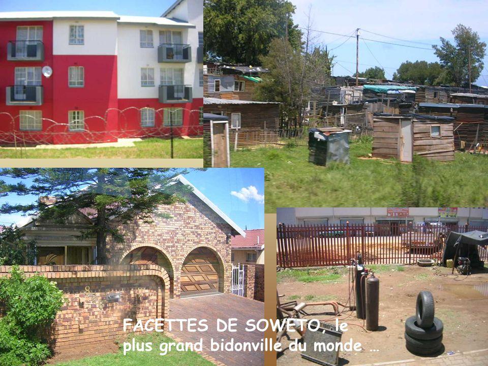 FACETTES DE SOWETO, le plus grand bidonville du monde …