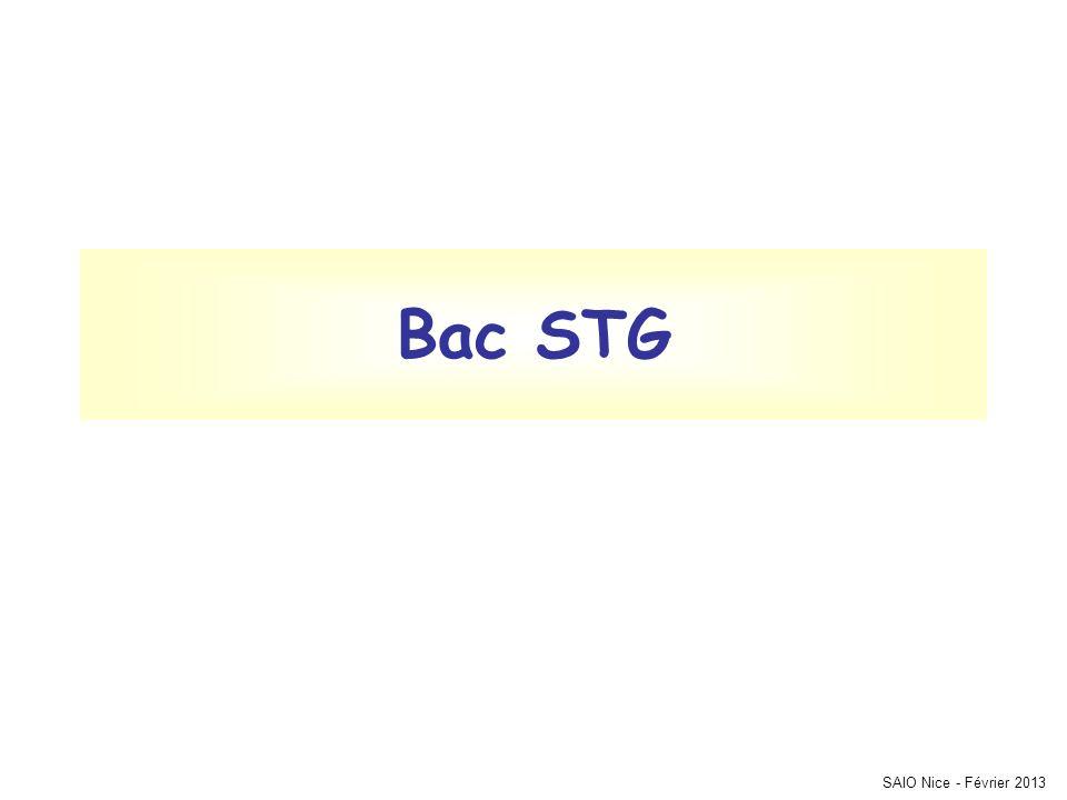Bac STG SAIO Nice - Février 2013