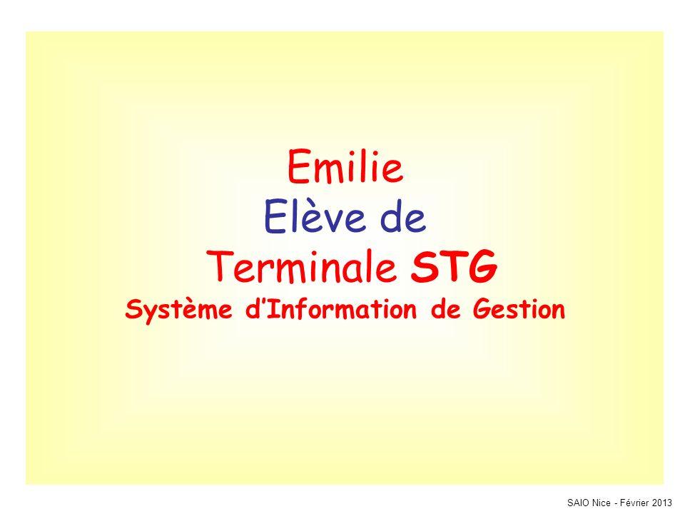 Emilie Elève de Terminale STG Système d'Information de Gestion