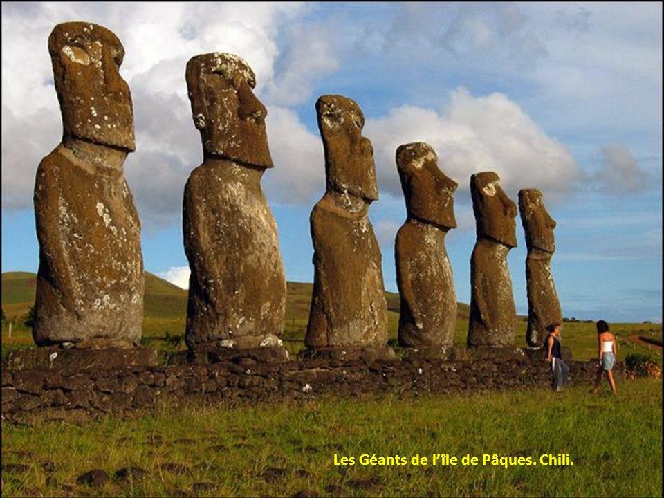 Les Géants de l'île de Pâques. Chili.