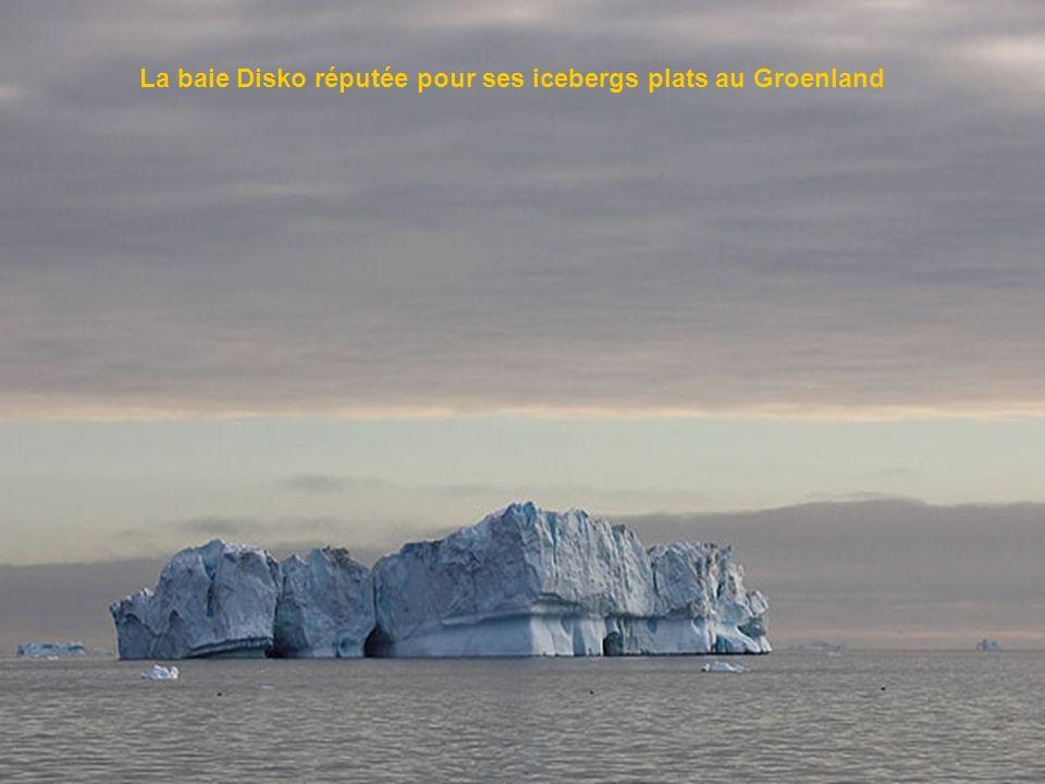 La baie Disko réputée pour ses icebergs plats au Groenland