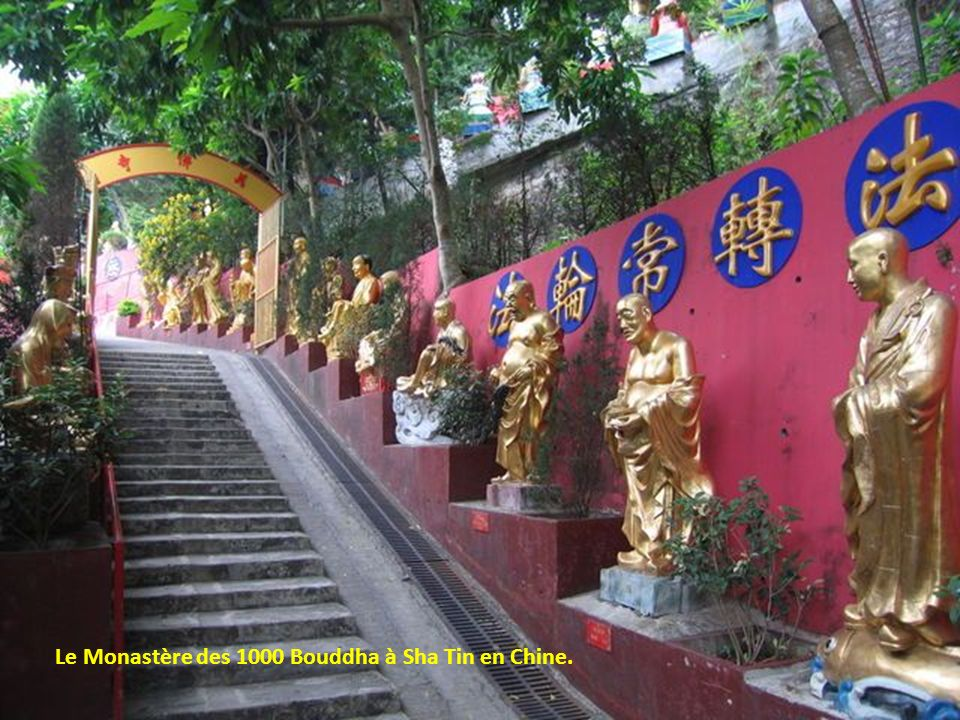 Le Monastère des 1000 Bouddha à Sha Tin en Chine.