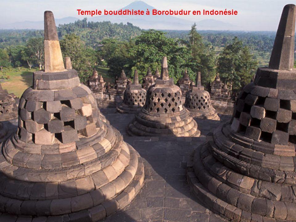 Temple bouddhiste à Borobudur en Indonésie