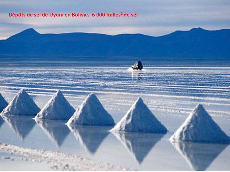 Dépôts de sel de Uyuni en Bolivie. 6 000 milles2 de sel