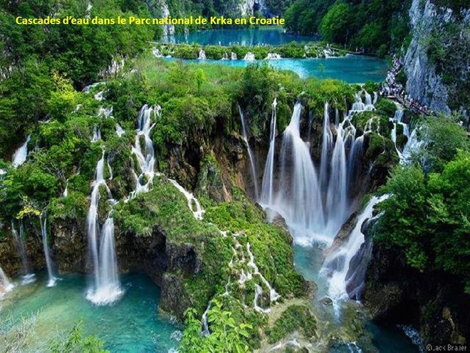 Cascades d'eau dans le Parc national de Krka en Croatie