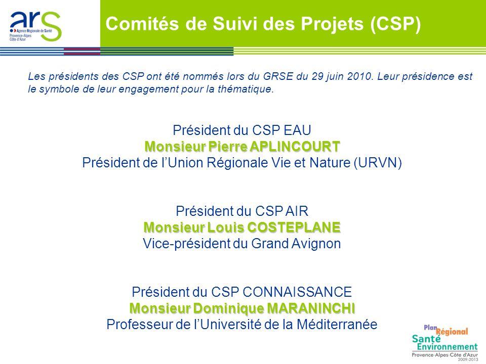 Comités de Suivi des Projets (CSP)