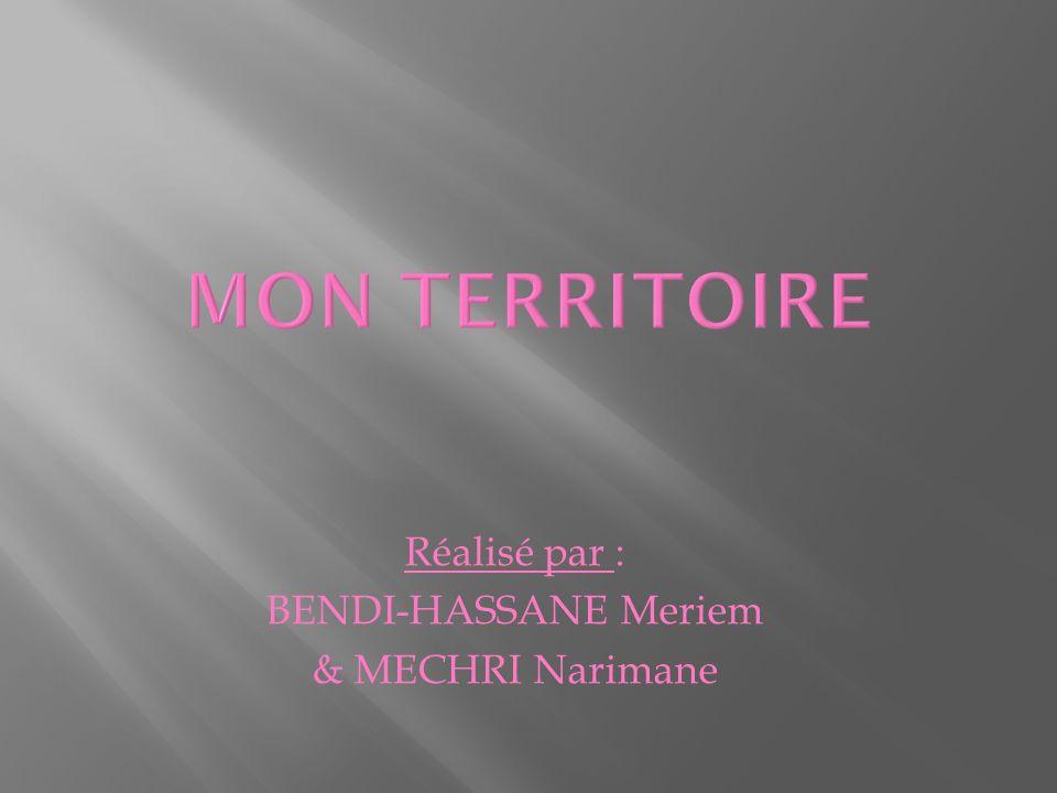 Réalisé par : BENDI-HASSANE Meriem & MECHRI Narimane