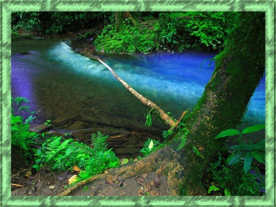 Le Rio Celeste - Costa Rica