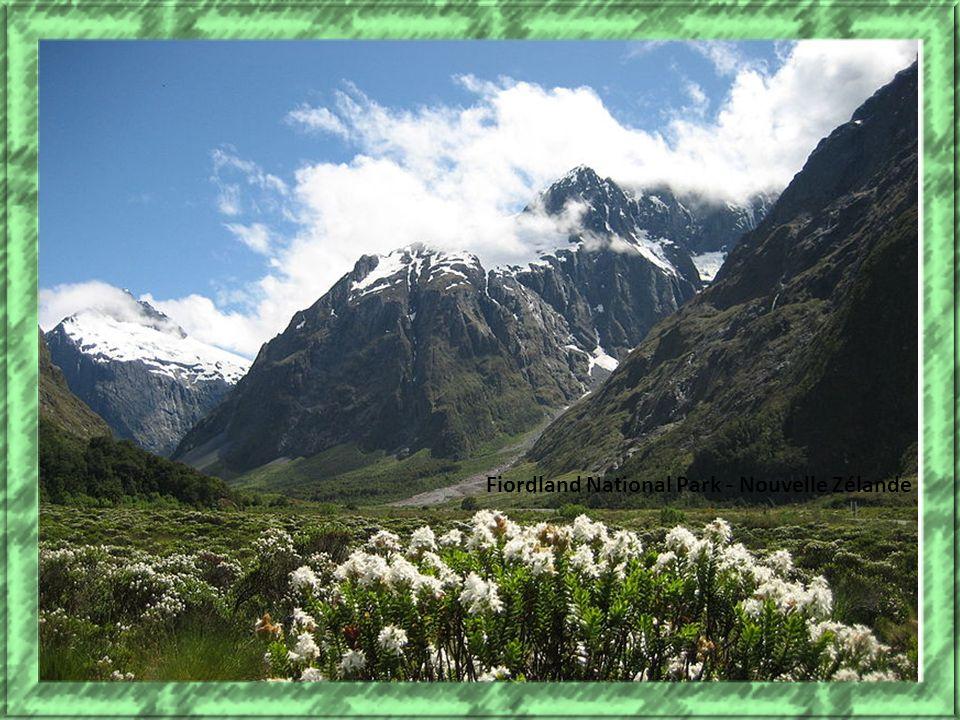 Fiordland National Park - Nouvelle Zélande