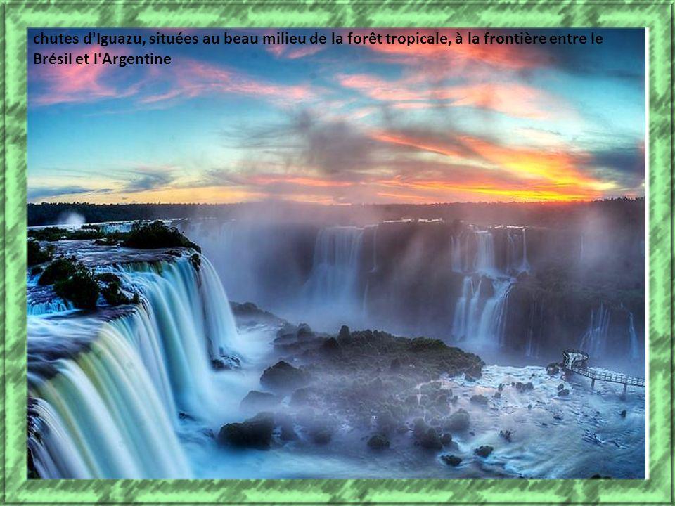 chutes d Iguazu, situées au beau milieu de la forêt tropicale, à la frontière entre le Brésil et l Argentine