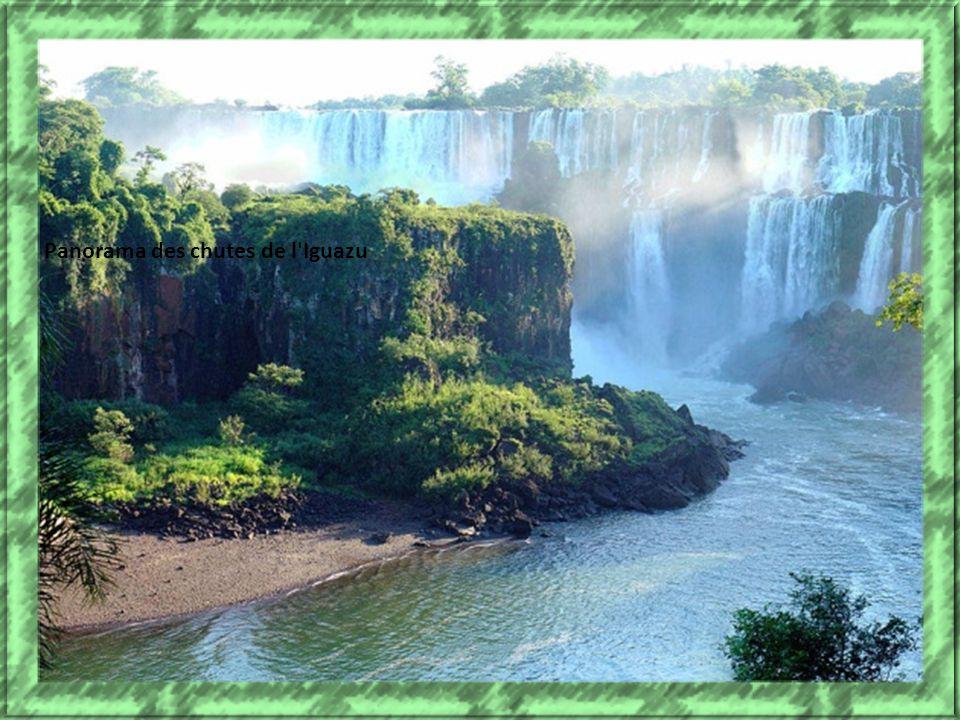 Panorama des chutes de l Iguazu