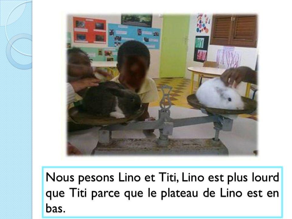 Nous pesons Lino et Titi, Lino est plus lourd que Titi parce que le plateau de Lino est en bas.