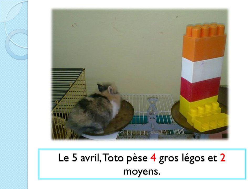 Le 5 avril, Toto pèse 4 gros légos et 2 moyens.