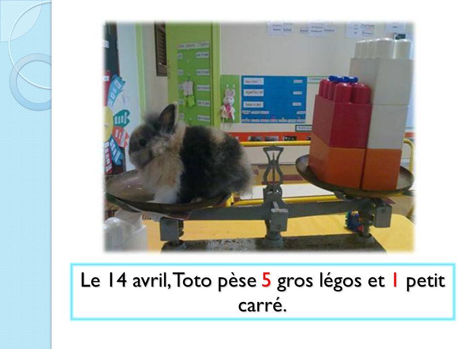 Le 14 avril, Toto pèse 5 gros légos et 1 petit carré.